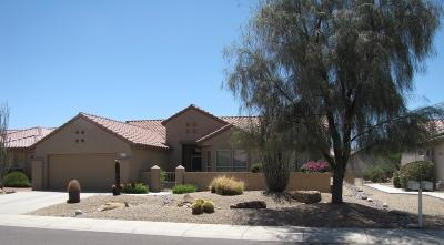 Maricopa County, Pinal County Single Family Home For Sale: 20046 N Window Rock Drive