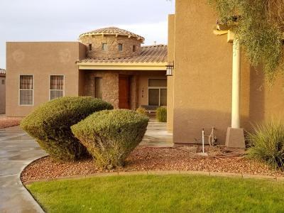 Phoenix Single Family Home For Sale: 1816 W Magdalena Lane