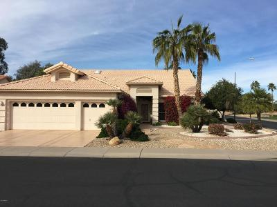 Chandler Single Family Home For Sale: 392 W Champagne Drive