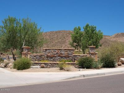 Mesa Residential Lots & Land For Sale: 3517 N Shadow Trail Trail