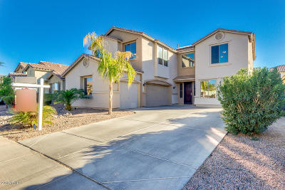 Maricopa Single Family Home For Sale: 43287 W Lindgren Drive
