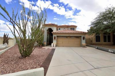 Goodyear Single Family Home For Sale: 10161 S Santa Fe Lane