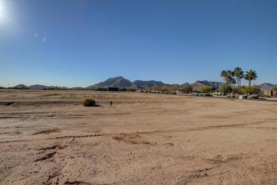 Queen Creek Residential Lots & Land For Sale: 21206 E Orion Way