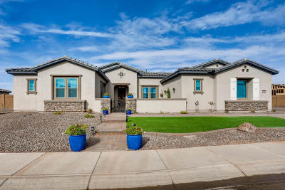 Cave Creek Single Family Home For Sale: 6008 E Calle De Pompas