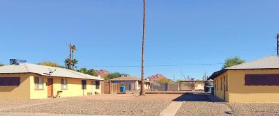 Phoenix Multi Family Home For Sale: 1131 49th Street