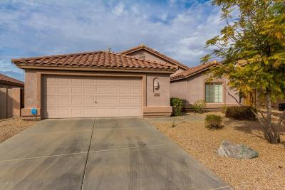 Cave Creek Single Family Home For Sale: 4518 E Thorn Tree Drive