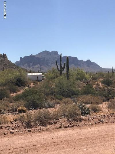 Apache Junction Residential Lots & Land For Sale: Aprox 5050 N Tomahawk Road