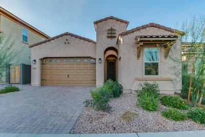 Phoenix Single Family Home For Sale: 4527 E Navigator Lane
