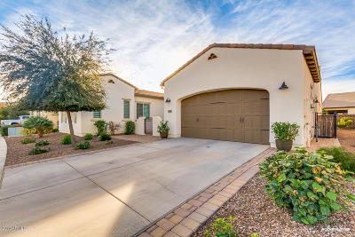 San Tan Valley Single Family Home For Sale: 1565 E Verde Boulevard