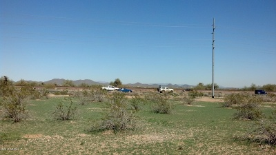 Residential Lots & Land For Sale: 192xx W Grand Avenue