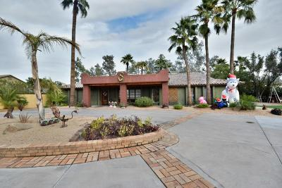 Phoenix Single Family Home For Sale: 16637 N 21st Street