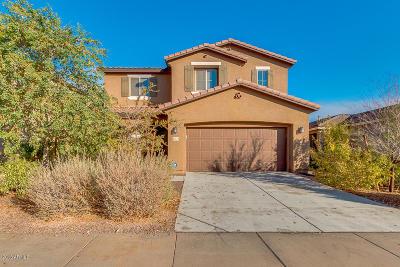 Buckeye Single Family Home For Sale: 21178 W Coronado Road