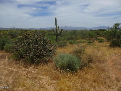 Scottsdale Residential Lots & Land For Sale: 14005 E Cavedale Drive