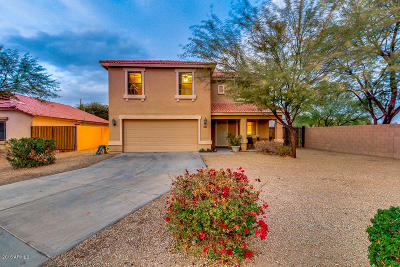 San Tan Valley Single Family Home For Sale: 2226 E Haflinger Way