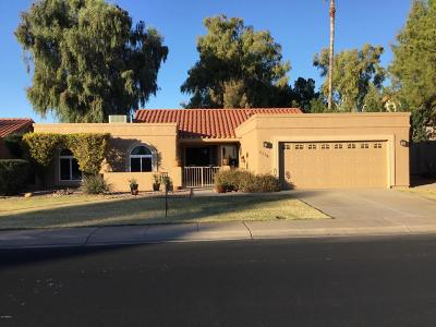 Mesa Single Family Home For Sale: 1114 Leisure World