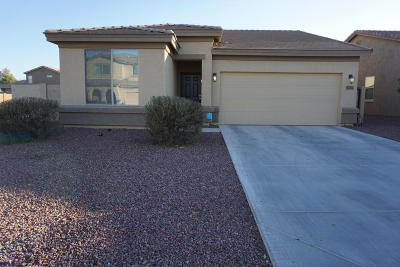 Queen Creek Single Family Home For Sale: 1711 W Gold Mine Way