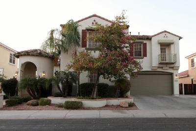 Chandler Single Family Home For Sale: 3448 S Eucalyptus Place