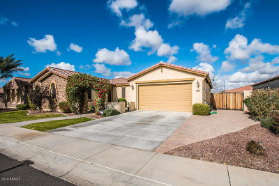Gilbert Single Family Home For Sale: 3404 E Sports Drive