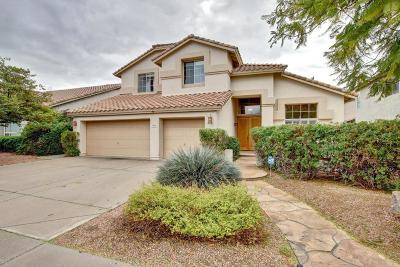 Chandler Single Family Home For Sale: 5095 W Monterey Street