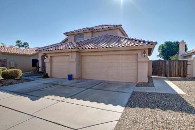 Phoenix Single Family Home For Sale: 1629 E Glenhaven Drive