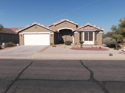 Casa Grande Single Family Home For Sale: 297 N San Juan Trail