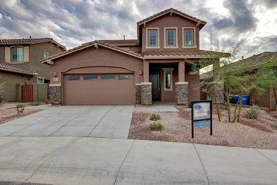 Cave Creek Single Family Home For Sale: 28923 N 41st Place