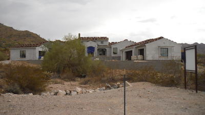 Buckeye Single Family Home For Sale: 3884 N Granite Ridge Road