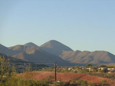 Fountain Hills Residential Lots & Land For Sale: 10039 N McDowell View Trail