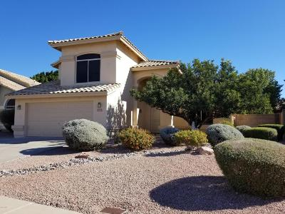 Mesa Single Family Home For Sale: 3531 N Diego