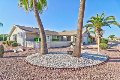 Mesa Single Family Home For Sale: 1053 Leisure World