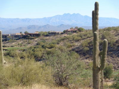 Fountain Hills Residential Lots & Land For Sale: 13450 N Rockview Court