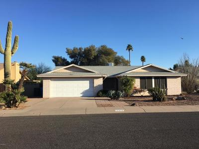 Phoenix Single Family Home For Sale: 11815 S Morning Star Drive