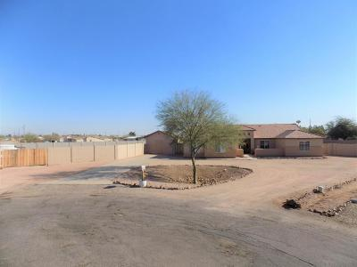 San Tan Valley Single Family Home For Sale: 4273 E Pony Track Lane