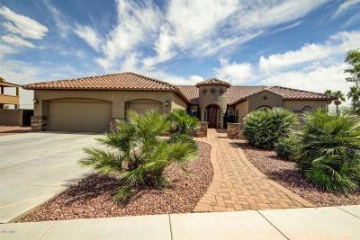 Chandler Single Family Home For Sale: 11631 E Navajo Drive