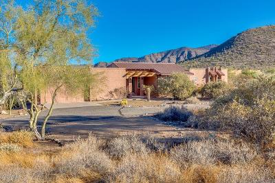 Cave Creek Single Family Home For Sale: 7312 E Highland Road