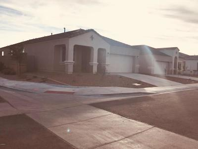 Maricopa Single Family Home For Sale: 41348 W Crane Drive