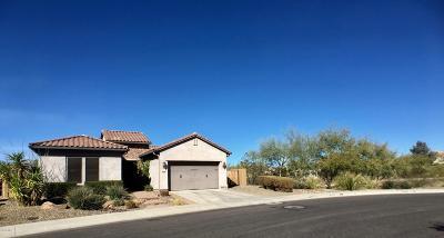Phoenix Single Family Home For Sale: 2036 W Chimney Rock Road