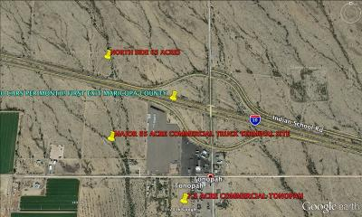 Tonopah AZ Residential Lots & Land For Sale: $3,000,000