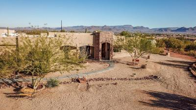 Phoenix Single Family Home For Sale: 33831 N 7th Street