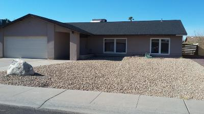 Phoenix AZ Single Family Home For Sale: $249,000