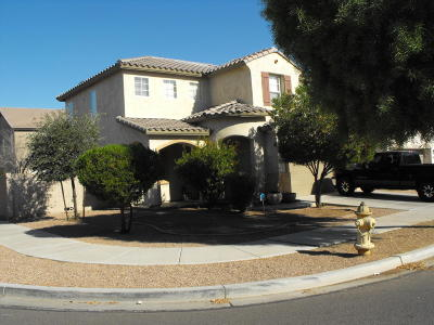Tolleson Single Family Home For Sale: 9032 W Magnolia Street