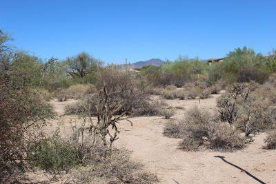 Scottsdale Residential Lots & Land For Sale: 33243 N Northstar Circle