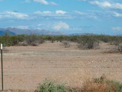San Tan Valley Residential Lots & Land For Sale: 32641 N Felix Road