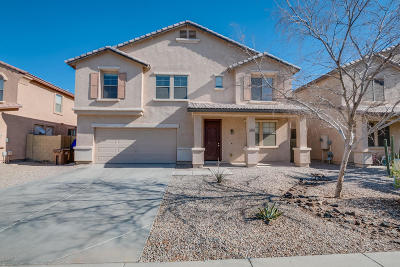 Maricopa Single Family Home For Sale: 19131 N Miller Way