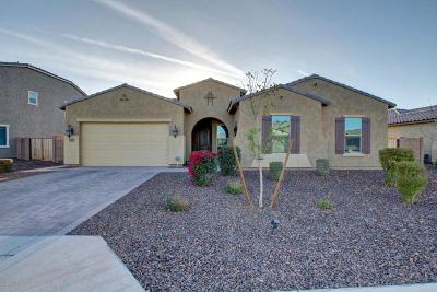 Gilbert Single Family Home For Sale: 5056 S Tatum Lane