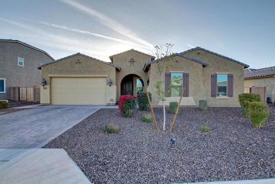 Gilbert Single Family Home For Sale: 5056 S Tatum Lane