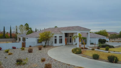 Laveen Single Family Home For Sale: 5120 W Desert Drive