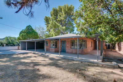 Phoenix Single Family Home For Sale: 8710 N 7th Avenue