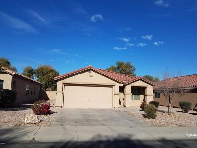 Queen Creek Single Family Home For Sale: 2884 W Silver Creek Lane