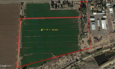 Tolleson Residential Lots & Land For Sale: 10339 W Southern Avenue